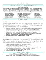 Sample Resume Banking by Bank Manager Resume Template Learnhowtoloseweight Net