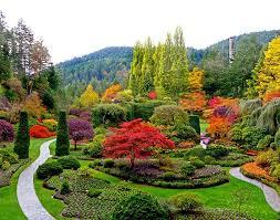 Bermuda Botanical Gardens So You Want To Build A Botanical Garden In Your Yard Pickndecor