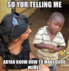 How To Make Good Memes - so yur telling me aryan know how to make good memes skeptical