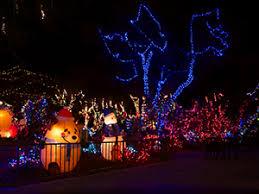Brookfield Zoo Festival Of Lights Athlone Literary Festival