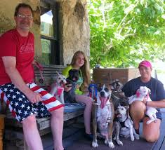 Arkansas Traveling With Pets images Dog friendly eureka springs ar jpg
