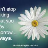 sweet morning quotes for