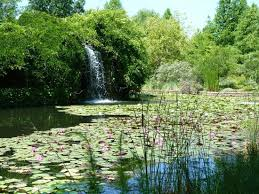Clark Botanical Gardens Waterfall At Clark Gardens Picture Of Clark Gardens Botanical
