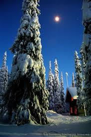 444 best winter images on winter time and