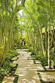 Hawaiian Tropical Botanical Garden by 362 Best In The Jungle Images On Pinterest Landscaping