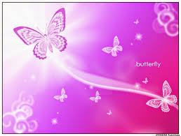 hd butterfly wallpapers free hd butterflies