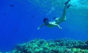 Colorado snorkeling images Snorkeling diving vana vacation rentals jpg