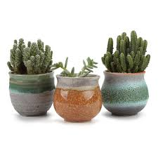 Planter Pot Amazon Com T4u 2 75 Inch Ceramic Summer Trio Succulent Plant Pot