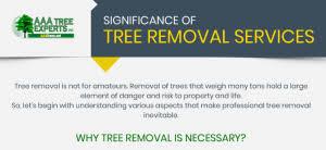 tree service nc aaa tree experts inc