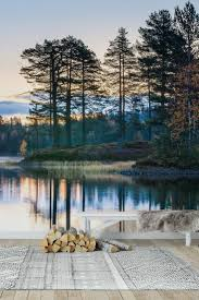 34 best water wall murals images on pinterest photo wallpaper quiet morning in the forest wall mural wallpaper