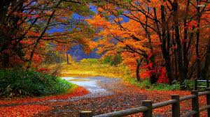 1920x1080 fall wallpaper share your wallpapers page 81