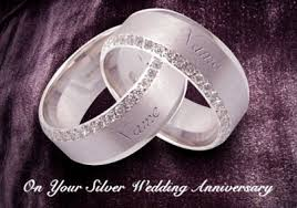 25th wedding silver anniversary cards funky pigeon