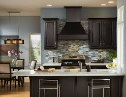 interesting kitchen paint colors with dark cabinets wooden cabinet