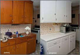 painting oak kitchen cabinets cream refinishing painting kitchen cabinets painting oak kitchen cabinets