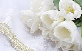 white flower flowers wallpaper white desktop 4770 wallpaper walldiskpaper