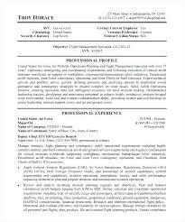 resume exles for government government resume template luxsos me