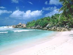 goa tour packages book your package now at 9811555716 goa tour