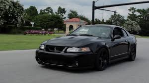 2003 Black Mustang Nasty 530 Horsepower Terminator Cobra Review Youtube