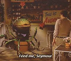 Feed Me Seymour Meme - feed seymour feed me little shop little shop of horrors animated