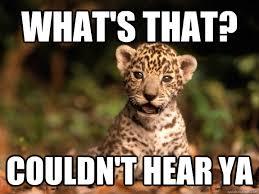 Def Meme - def leopard memes quickmeme