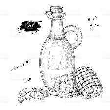 bottle of corn cooking oil vector hand drawn illustration glass