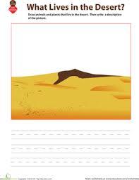 sketch a habitat desert worksheet education com