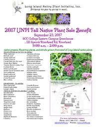 native plant sales long island native plant initiative home