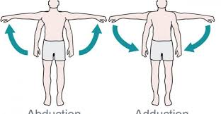 what u0027s the difference between abduction and adduction