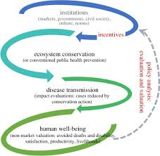 ecosystem change and human health implementation economics and