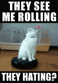 They See Me Rollin Meme - image funny cat they see me rolling they hating s roomba cat