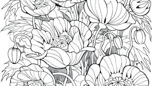printable coloring pages of pretty flowers coloring pages to print flowers everychat co