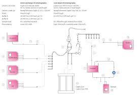 honda wave 100 wiring diagram wiring diagram