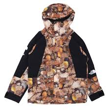 North Face Light Jacket Supreme X The North Face Mountain Light Jacket Leaves Millioncart