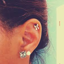 awesome cartilage earrings mini bow cartilage earring and owl earring makes me want to get