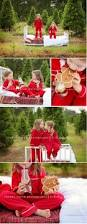 54 best christmas sessions images on pinterest family photo
