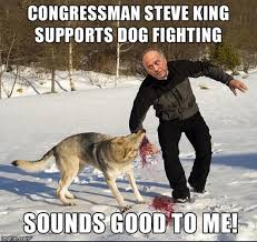Fighting Memes - congressman steve king supports dog fighting imgflip