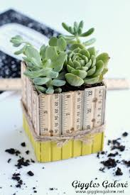 top picks for succulent planter ideas the crafting