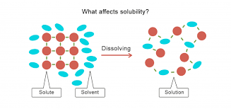 what affects solubility worksheet edplace