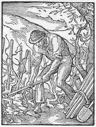 Types Of Hoes For Gardening - hoe tool wikipedia