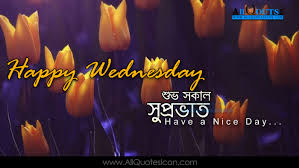 quotes on good morning in bengali happy wednesday quotes images best bengali good morning quotes