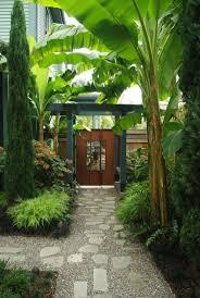 Tropical Backyard Ideas Backyard The Of Landscaping Tropical Landscaping Ideas
