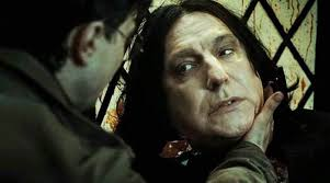 Harry Potter How Would Snape Treated Harry Potter If Harry Had Been A