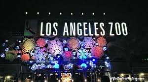 light display los angeles los angeles holiday tradition la zoo lights goexplorenature com