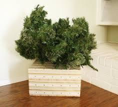 cover your tree base simple fix hometalk