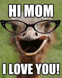Hi Memes - hi mom i love you judgmental bookseller ostrich quickmeme