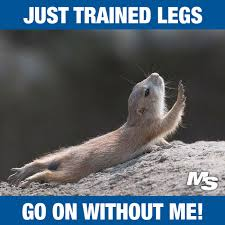 Come And Get It Meme - 13 hilarious after leg day memes for people who really train