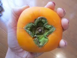 a sweet season persimmons jtbusa blog