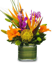 Arrangments by Exotic Floral Arrangements Out Of 5 Dentists Recommend This