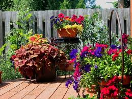 Patio Container Garden Ideas Patio Gardening 101 A Beginner S Guide To Patio Gardens And