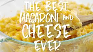 the best macaroni u0026 cheese recipe ever kitchen treaty